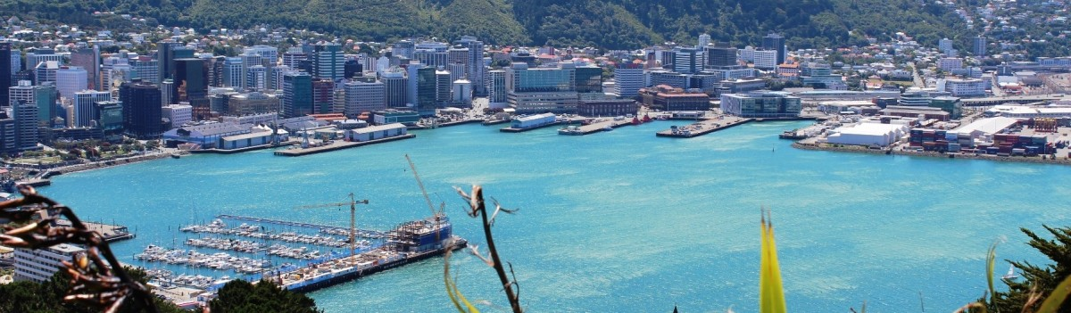 NZ Wellington Harbour